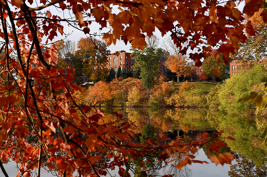 Autumn at Springfield College