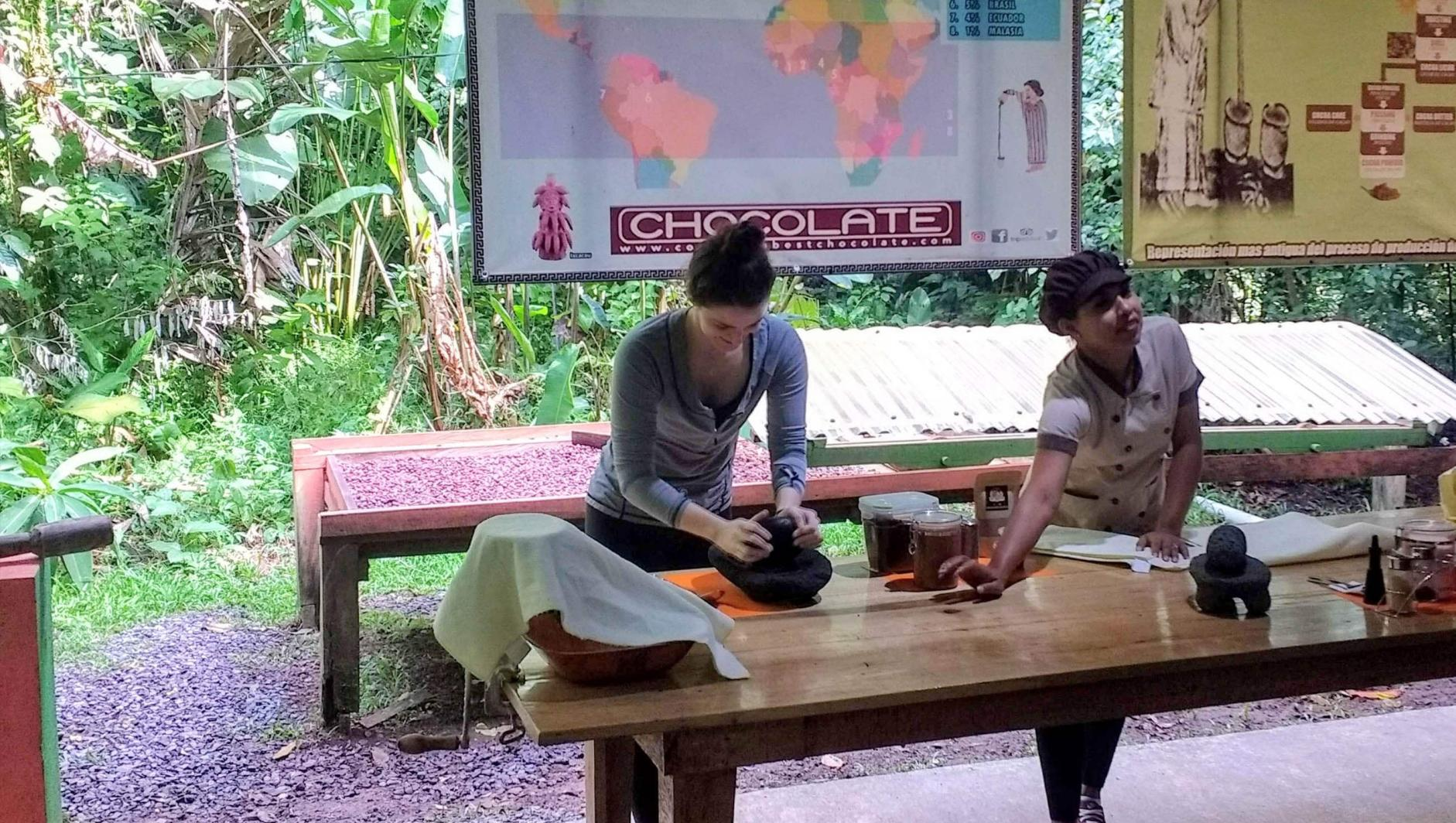 A student handgrinds a cacao plant.