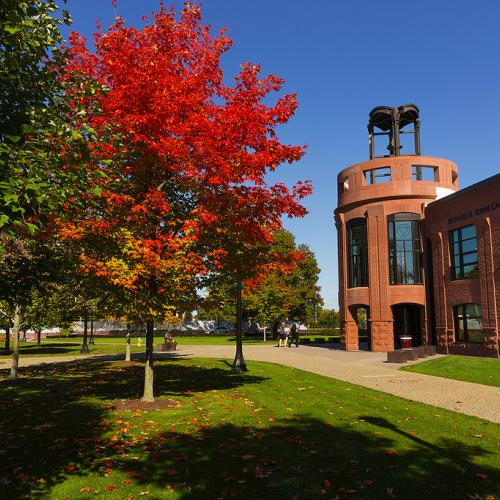 Leaves changing colors on the beautiful Springfield College campus