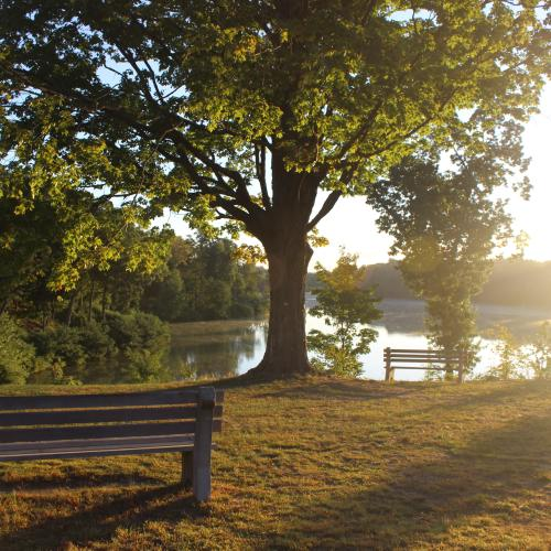 The sun rises over Lake Massasoit at Springfield College