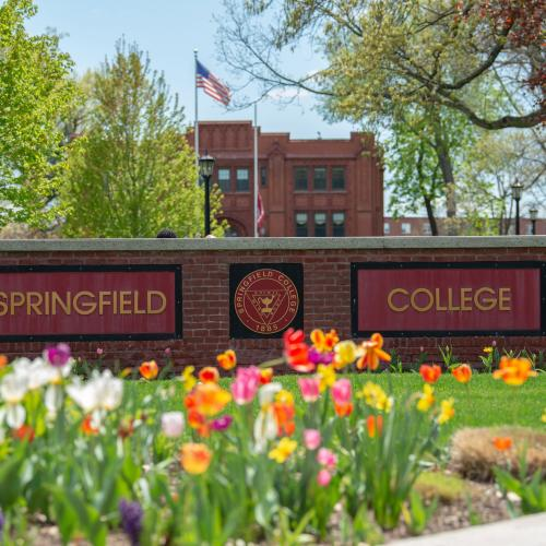 Springfield College sign on a beautiful spring day surrounded by tulips