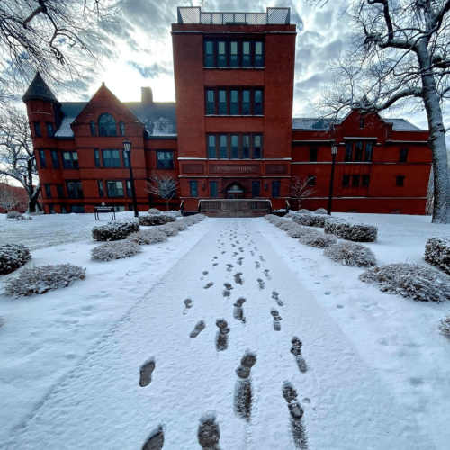 Footsteps in the snow leading to Judd Gymnasia