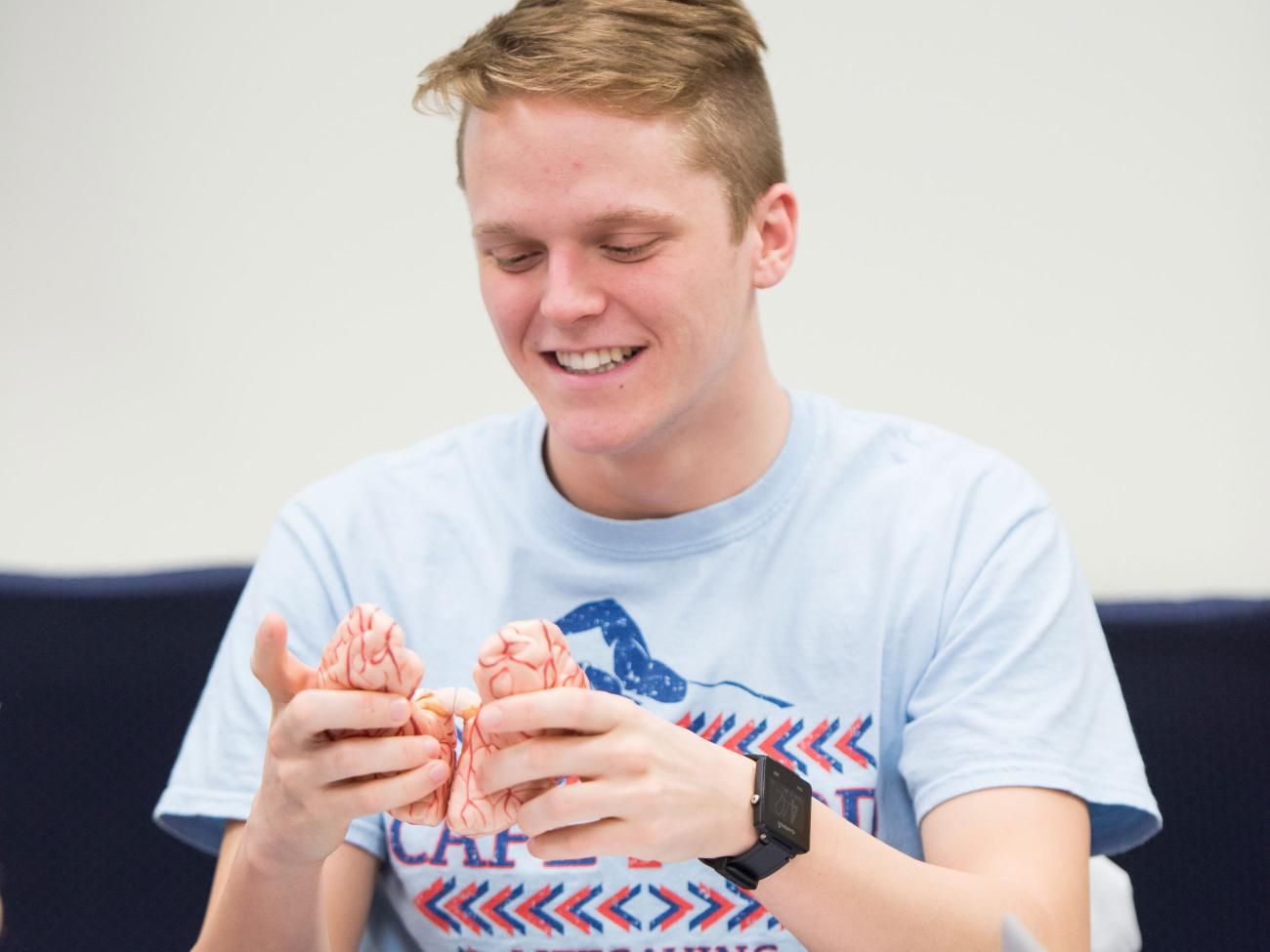 A student looks at a brain prop during a class meeting.
