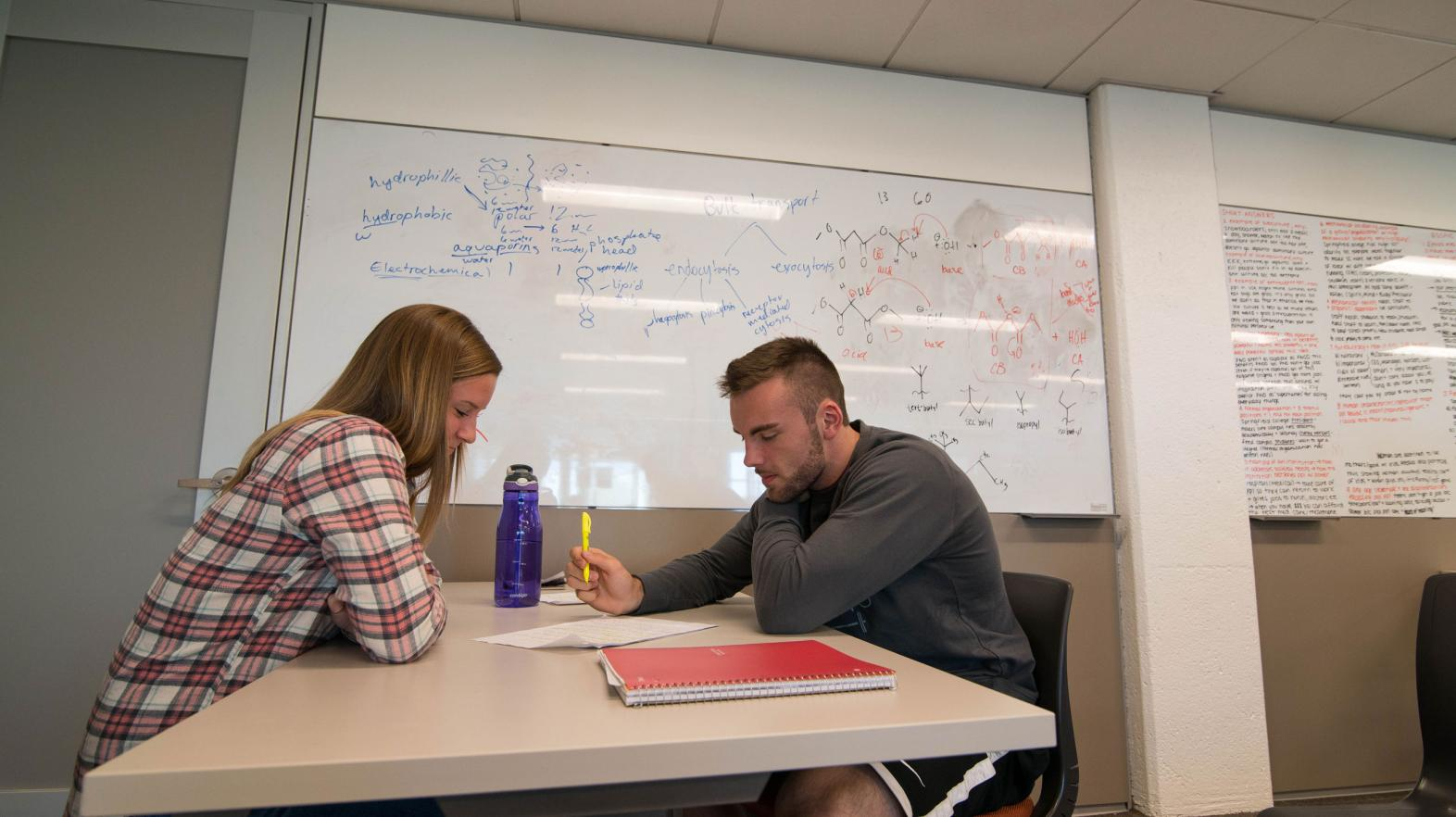 Two students study in a quiet space in the Learning Commons.