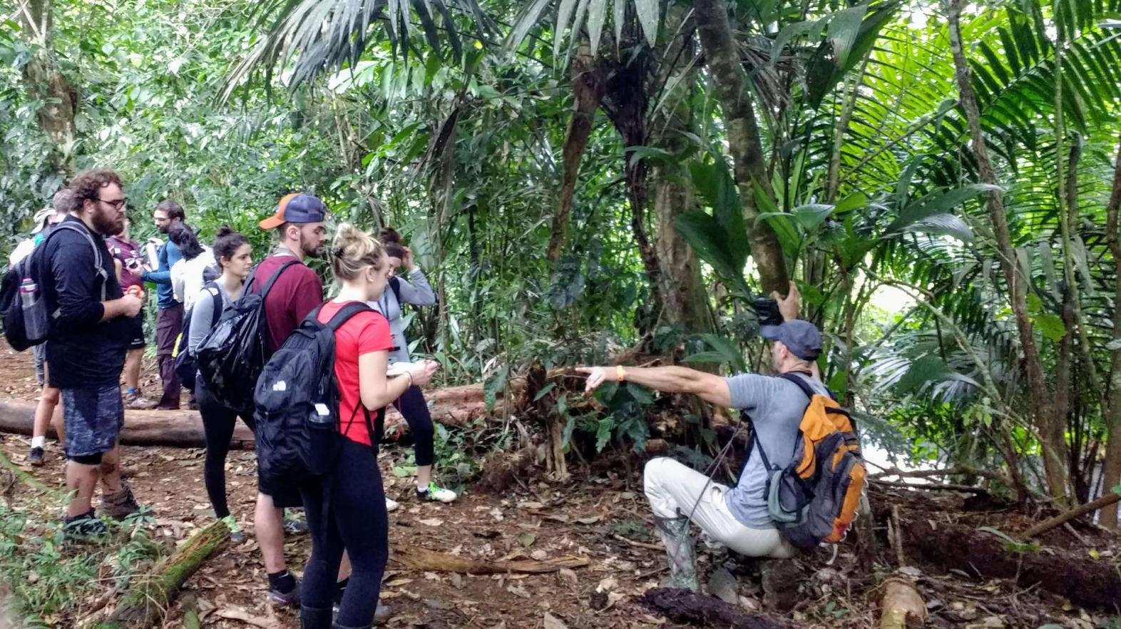 Students set up camera traps in La Selva.