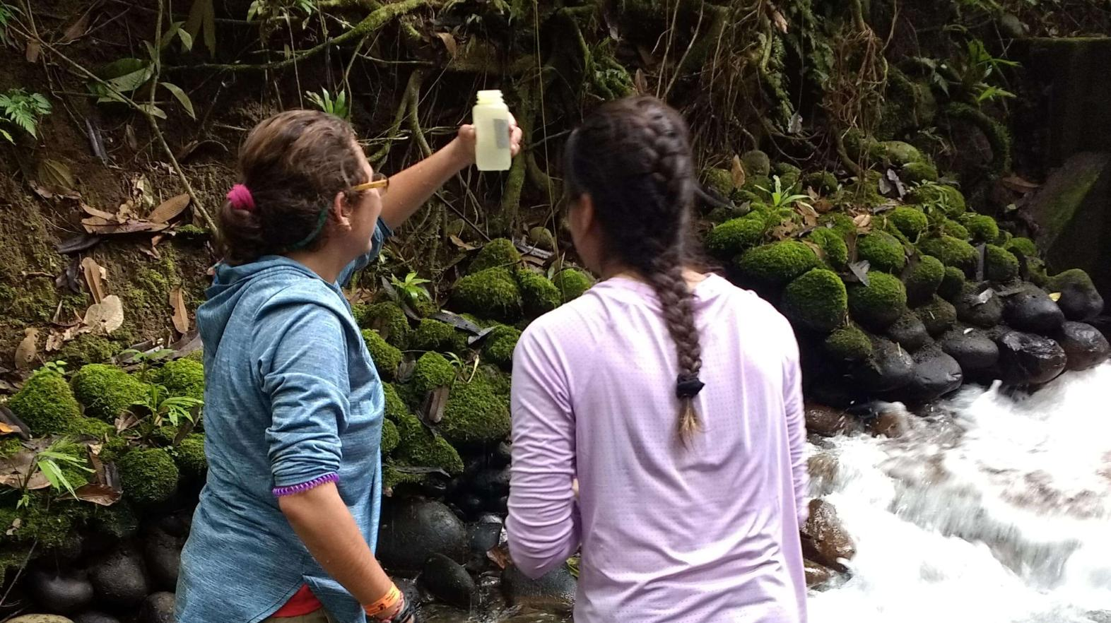 Students stand in a stream taking samples.