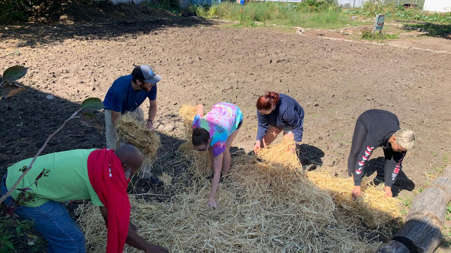 Students mulch in a community garden