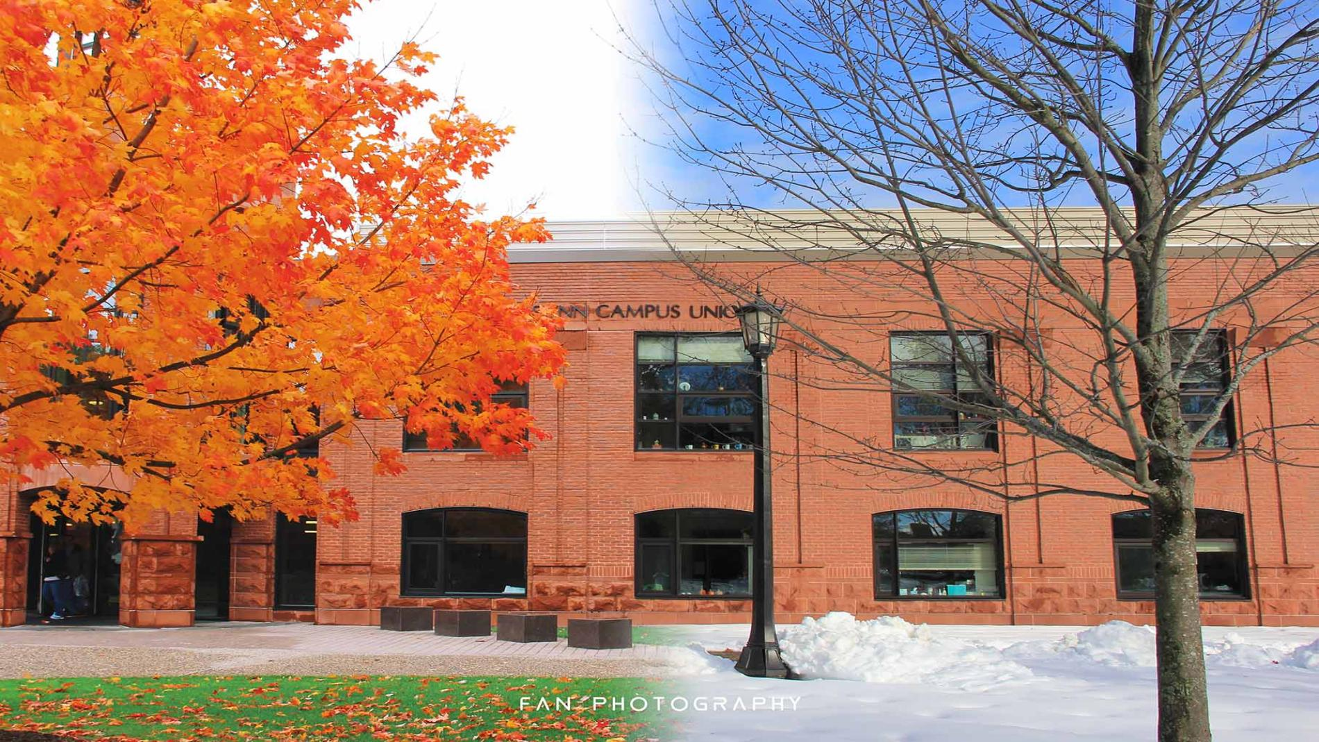 A photo showing both fall and winter on the Springfield College campus.